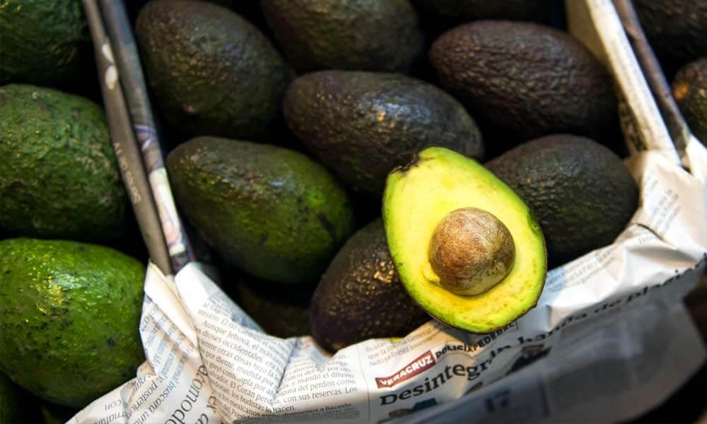 Aguacate mexicano, de los productos más vendidos a nivel mundial