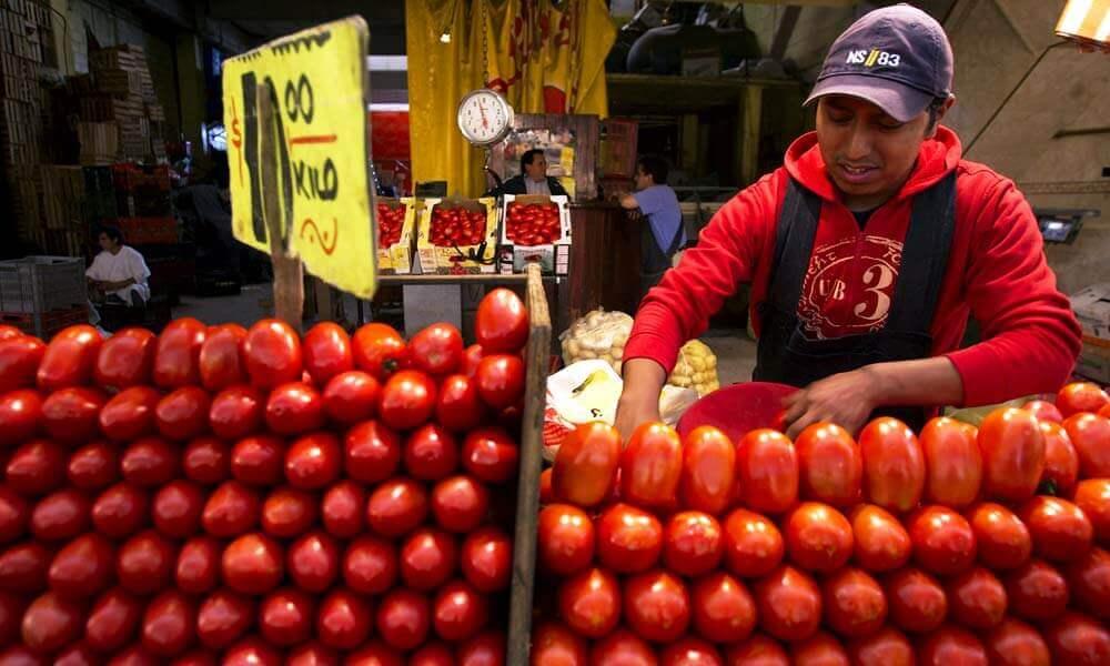 Jitomates mexicanos, muy vendido a nivel mundial