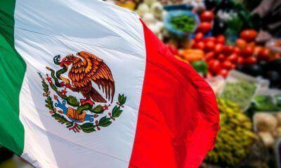 Los Productos Mexicanos Más Vendidos a Nivel Mundial