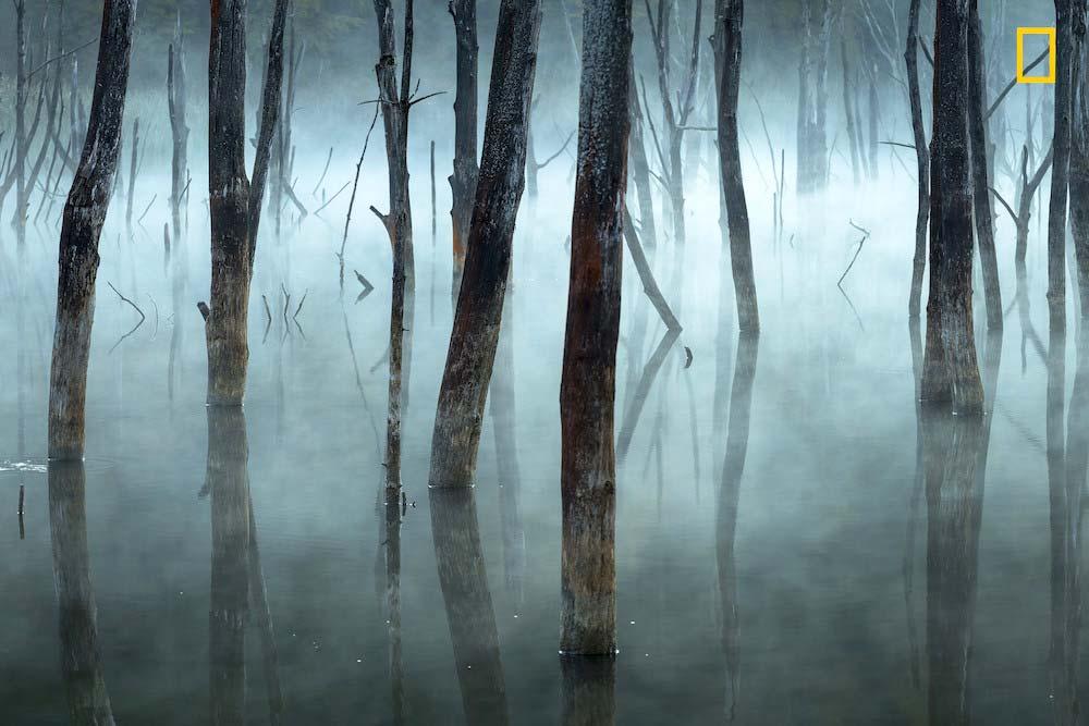 Fotografía de Gheorghe Popa