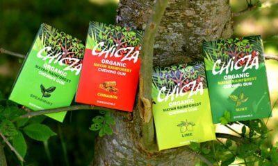 Chicle orgánico mexicano Chicza